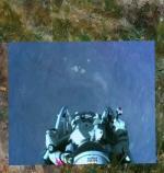 301289FelixBaumgartnerskydivingrecord